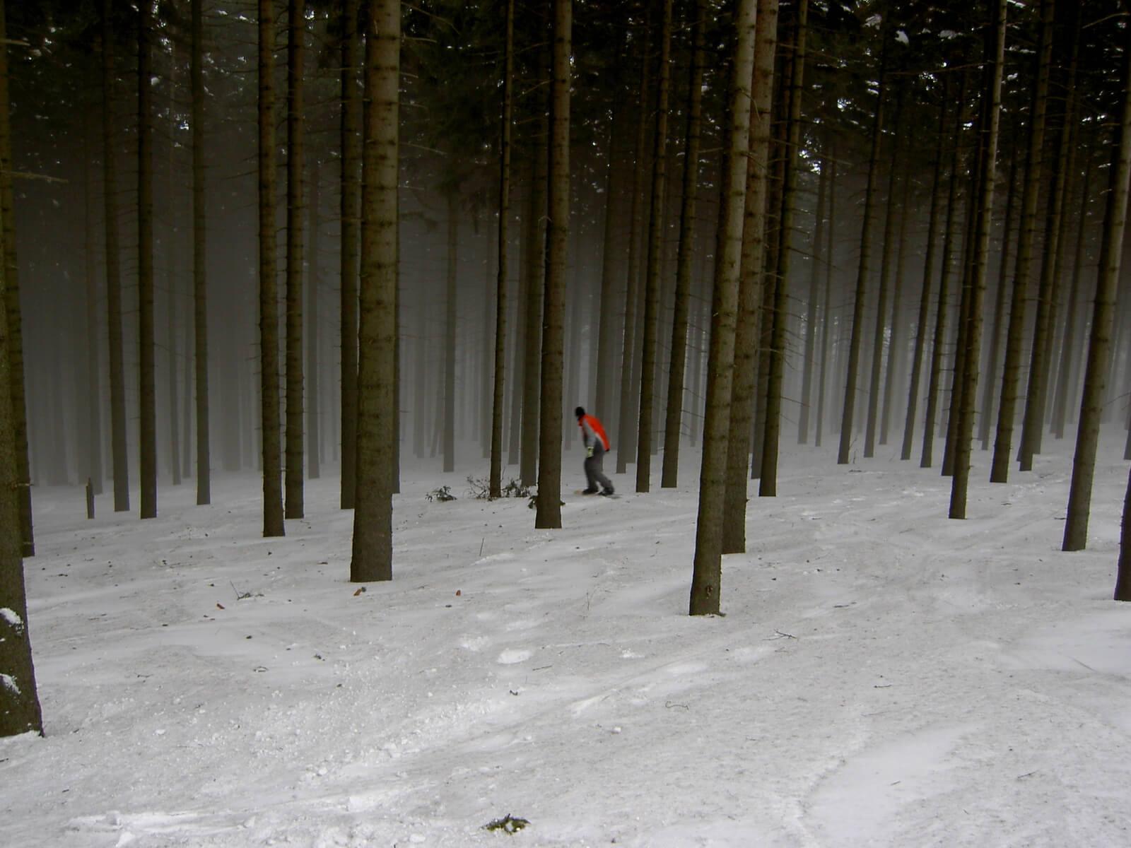 ramzowa czechy las